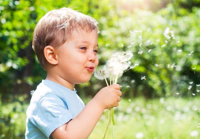 4歳の男の子が喜ぶ誕生日プレゼント
