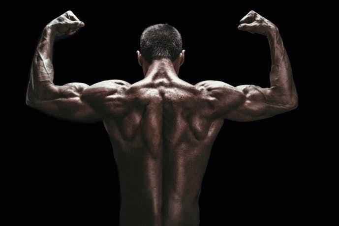 背中の筋肉を鍛え抜いた男