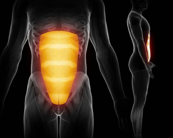 腹筋を効率良く鍛えられる筋トレメニュー
