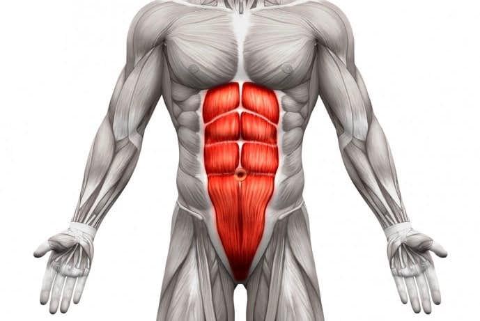 シックスパックを作る上で最重要の筋肉