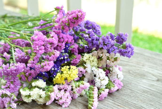 結婚祝いの花プレゼントはスターチス