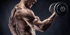 上腕筋の効果的な鍛え方。力強い腕を作る筋トレ&ストレッチメニューとは | Smartlog
