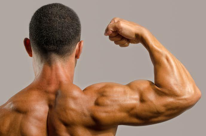 回旋筋腱板の役割
