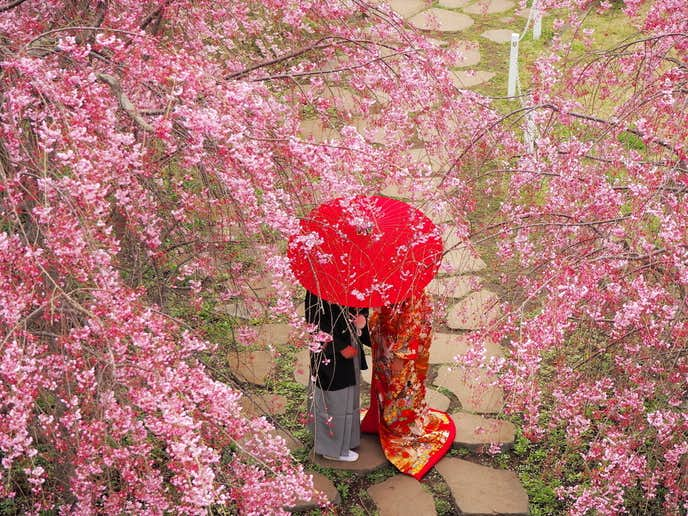 京都の結婚式