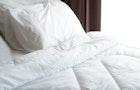 布団のクリーニング費用と日数目安。長持ちする毎日のお手入れとは | Smartlog