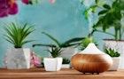 一人暮らしにおすすめの加湿器5選。コンパクト&パワフルな一台とは   Smartlog