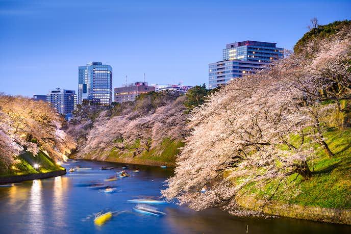 春デートにおすすめな上野恩賜公園