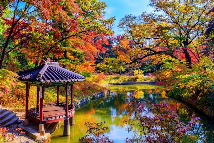 ソウルの人気観光名所「光化門」