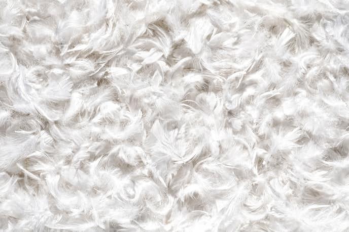 羽毛製品のおすすめ宅配クリーニング
