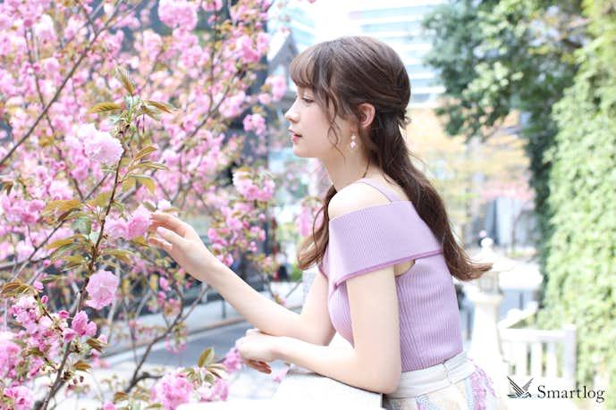 藤井サチ桜