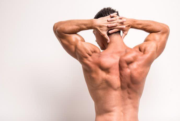 脊柱起立筋を効果的に筋肥大させる鍛え方.jpg