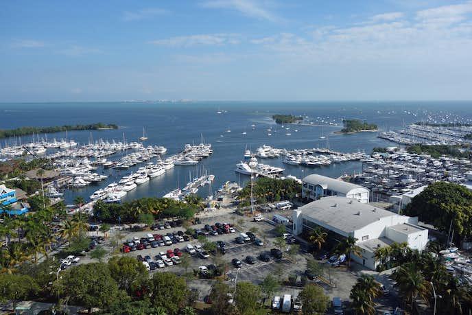 マイアミでおすすめの観光スポットはココナッツグローブ
