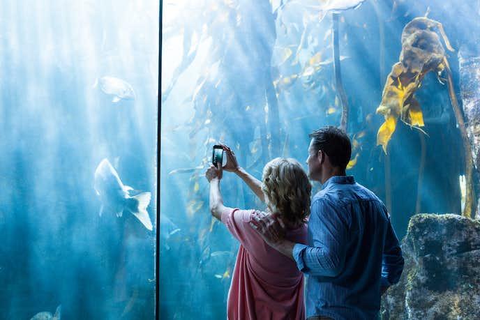 水族館デート.jpg