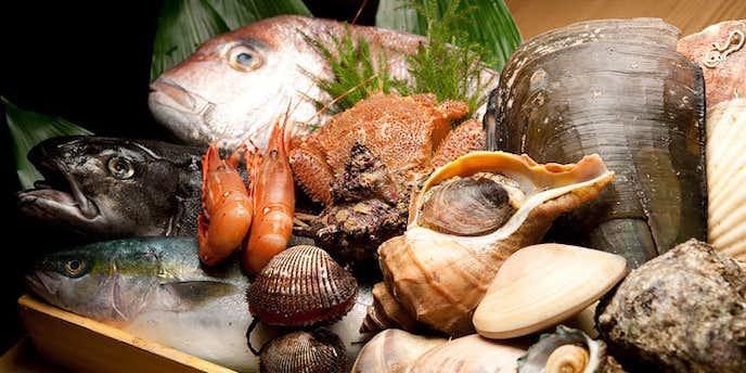 ゼックス代官山の美味しい和食のランチ