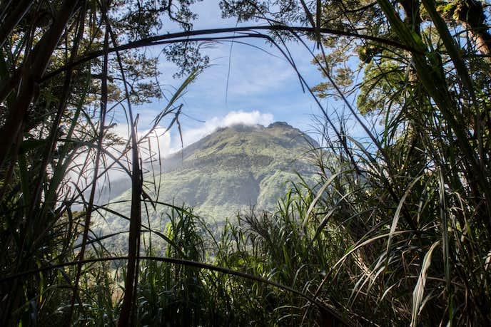フィリピンでおすすめの観光地はアポ山