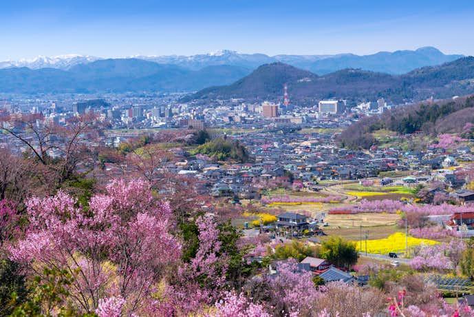 福島県の日本酒の特徴とは