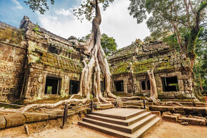 カンボジアでおすすめの観光地はタプロム遺跡