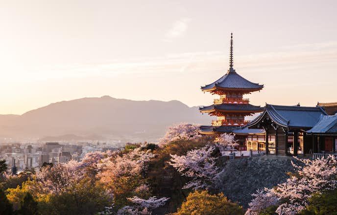 京都の日本酒の特徴とは