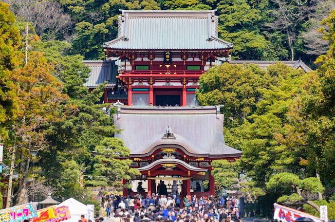 鎌倉でおすすめの観光地は鶴岡八幡宮