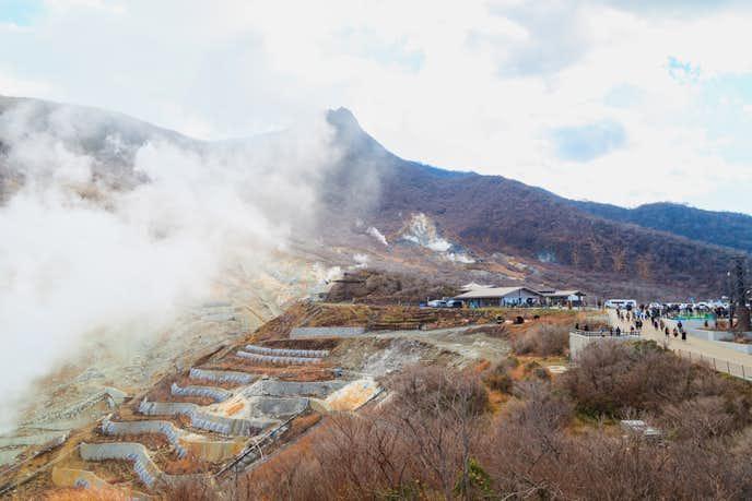 箱根でおすすめの観光地は大涌谷