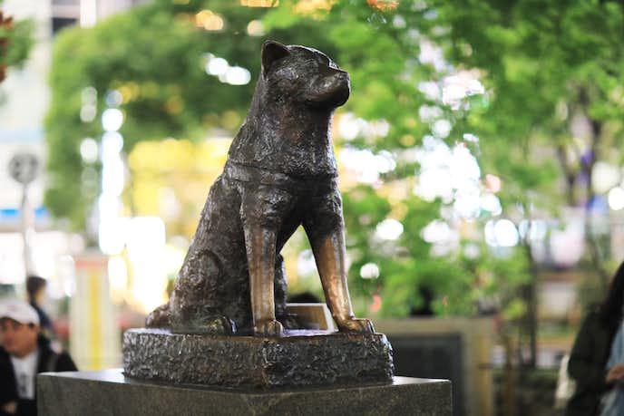 渋谷でおすすめの観光地は渋谷駅前 忠犬ハチ公像