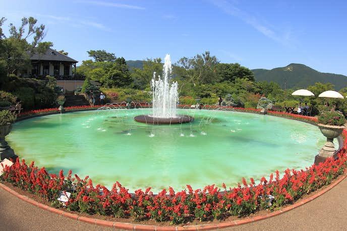 箱根でおすすめの観光地は箱根強羅公園