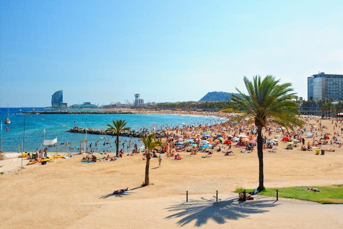 バルセロナでおすすめの観光地はバルセロネータ