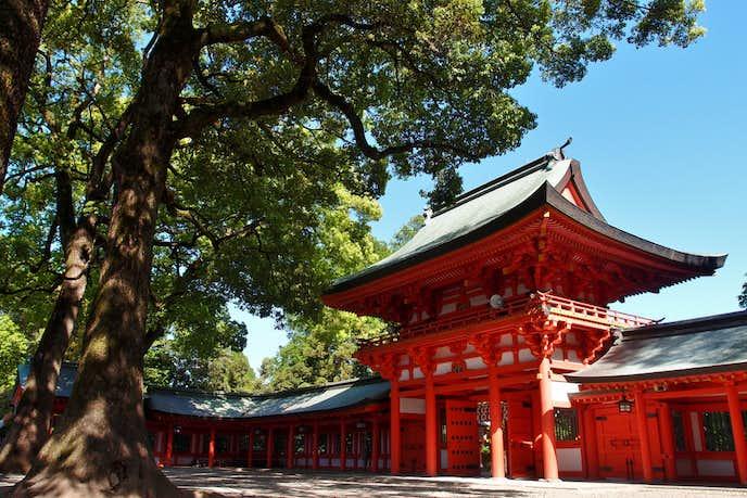 大宮でおすすめの観光地は武蔵一宮 氷川神社