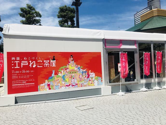 夏デートでおすすめのデートスポットは江戸ねこ茶屋