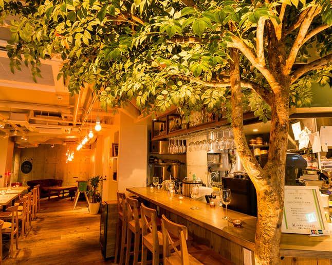 吉祥寺でおすすめのモーニングはOrganic Cafe あたたかなお皿