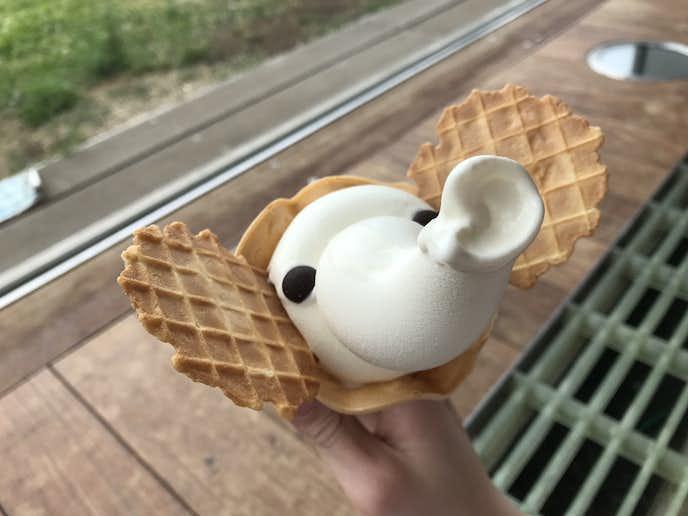 象の鼻カフェ