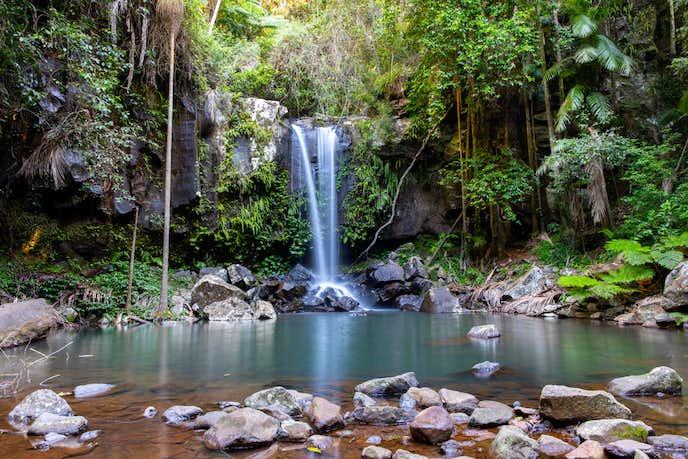 ゴールドコーストでおすすめの観光地はタンボリン国立公園