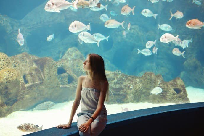 水族館デートでは女性は男性を意識しすぎなくていい