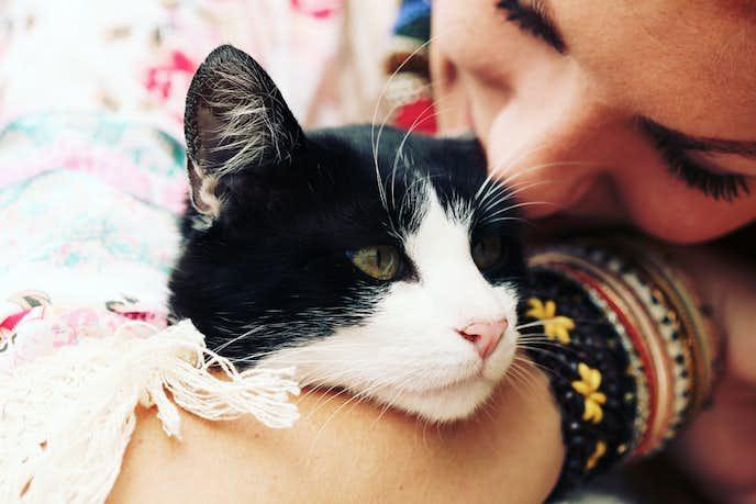 干物 女 と 幸せ を 呼ぶ 猫