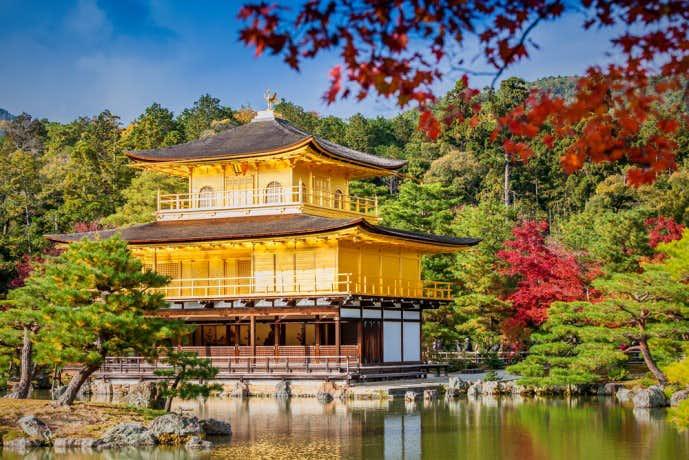 京都にある金閣寺の紅葉