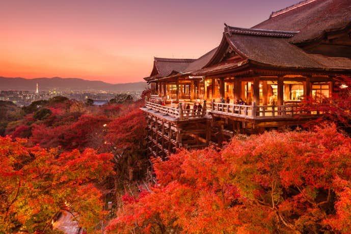 清水寺で紅葉デート