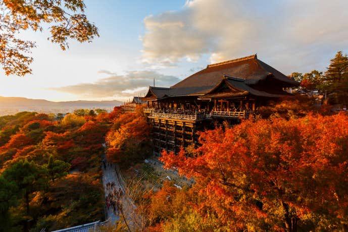 彼女と訪れたい秋の京都旅行